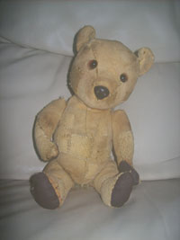 Teddy after treatment
