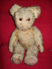 Teddy before treatment